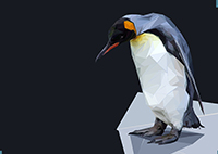 Pinguin || Polygones Rendering